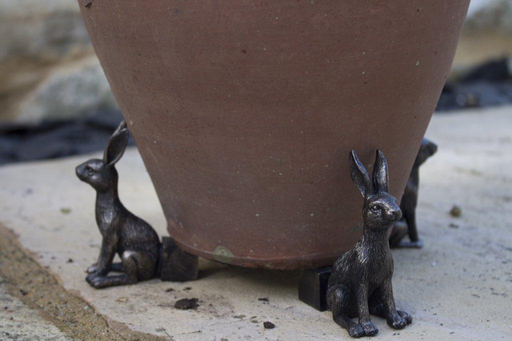 Potty about pot plants? You need 'Potty Feet' - unique little pot feet which help raise your pots!  http://www. jardinopia.com  &nbsp;   #loveyourgarden <br>http://pic.twitter.com/uEw6lsZFAk