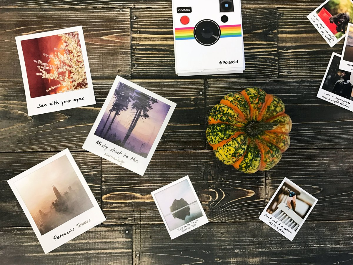 polaroid on twitter polaroid prints from your iphone yes please