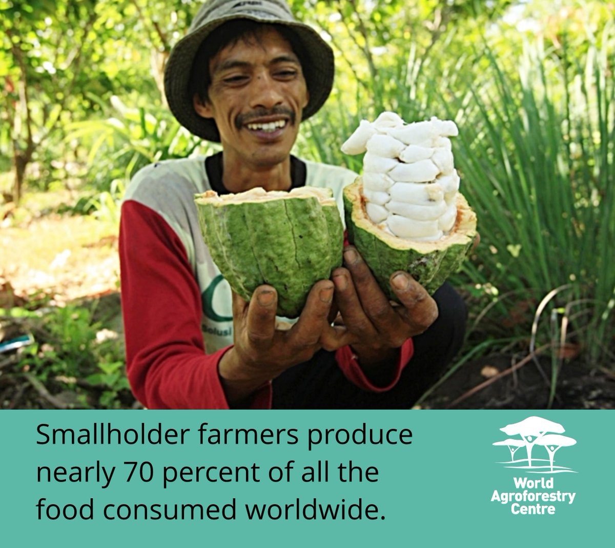 Smallholder farmers produce nearly 70% of all the #food consumed world...