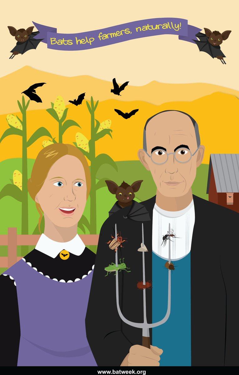 Bats help farmers by saving billions of...