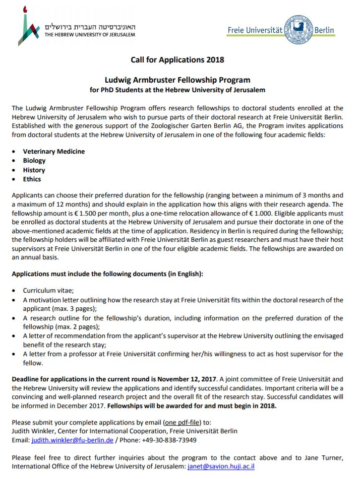 essay about new year holidays students