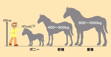 @yuyuhonoka 比較画像見つけましたが、日本にいるのは、体高(肩までの高さ)160cm前後の軽種がほとんどなので、私もまだ重種で180-200cmあるような子には会ったことがないです 笑。さっきのは完全に黒王😆