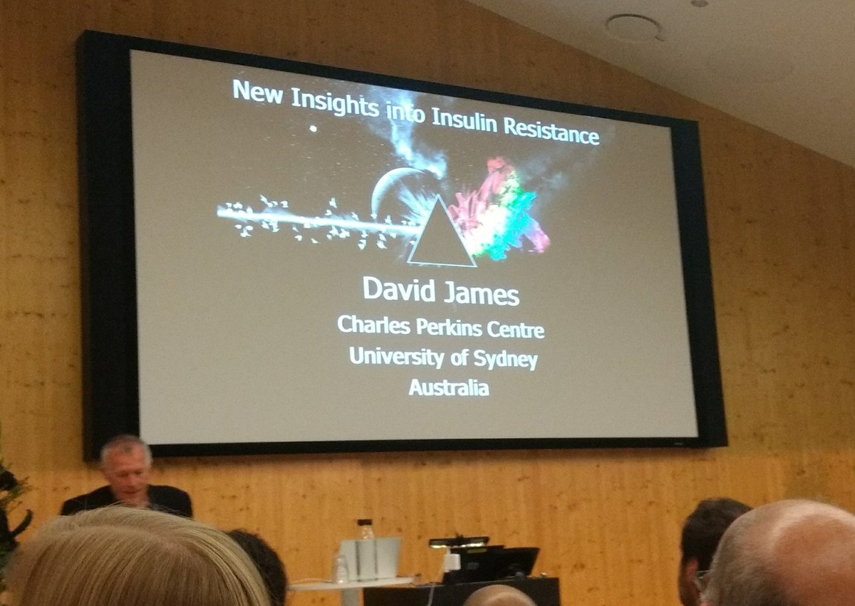 David James on Pink Floyd &amp; insulin action - starting exciting conference! Glucose centric insulin resistance #metabolisminaction #favrholm <br>http://pic.twitter.com/2NCKt8FgYG
