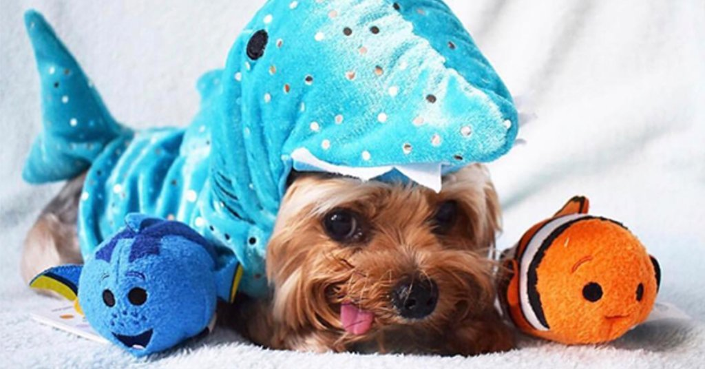 Disney On Twitter 25 Disney Pets Dressed As Disney Characters To