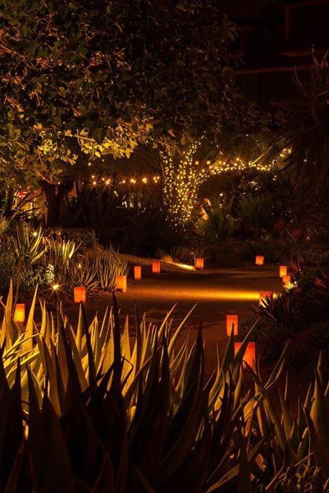 Desert Botanical Garden On Twitter Hey Garden Members You Get