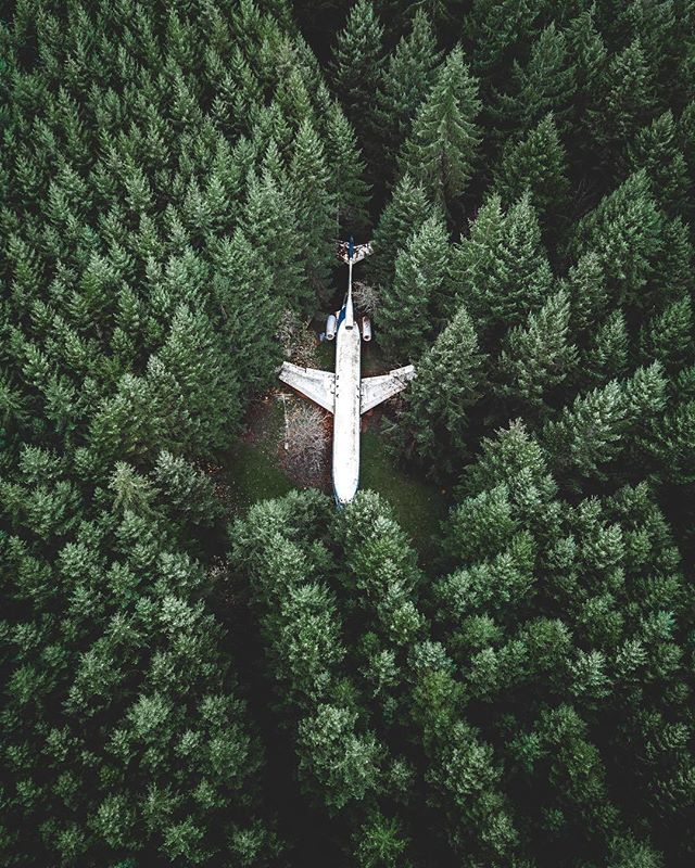Check out this plane nestled in the Oregon rainforest, this pic is real! Follow: @luxhangout #luxhangout . . . credits: @braybraywoowo https://t.co/fD8lESZPN6 1