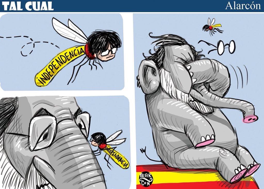 Cataluña - Alarcón