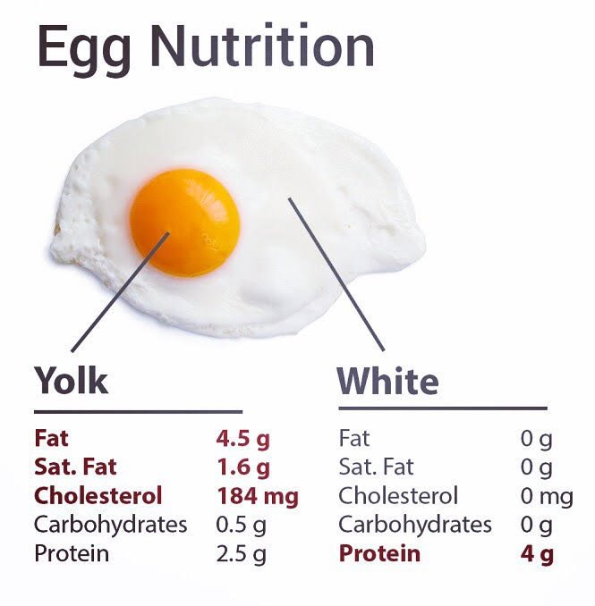"Medisential Co on Twitter: ""Medi FYI - Nutritional Value of ""Eggs"" - Know  your facts! #Eggs #egg #diet #food #HealthyEating #EggClub #fitness  #protein ..."