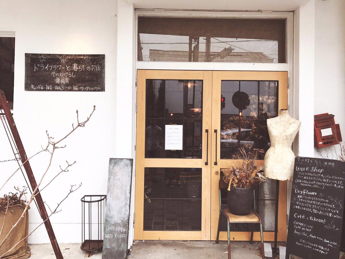 名古屋の本山のドライフラワー専門店に来たのだけど最強に最高な場所すぎて写真を撮る手が止まらない