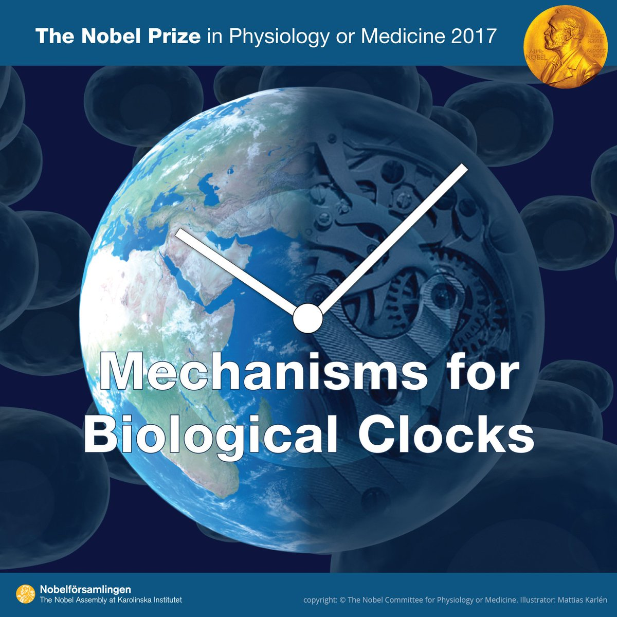 "The 2017 #NobelPrize #Medicine ""for their discoveries of molecular mechanisms controlling the circadian rhythm"""