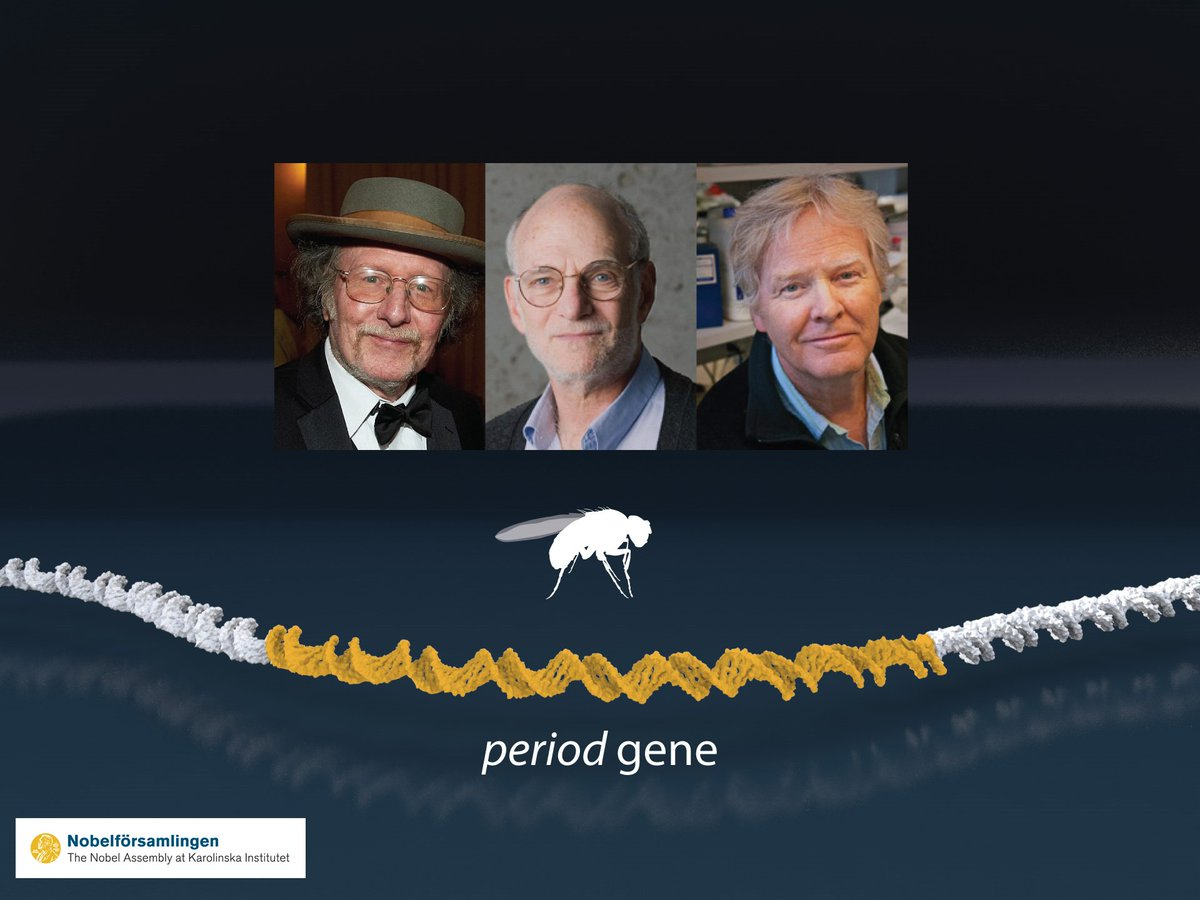 лауреати Нобелівської премії 2017 з медицини