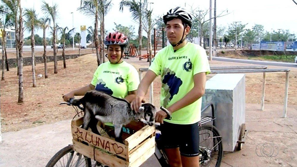 Casal larga tudo e viaja pelo Brasil de bicicleta carregando cabrita de estimação https://t.co/XRtfKXJ2ue #G1