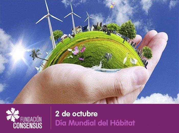 Fundación Consensus on Twitter: \