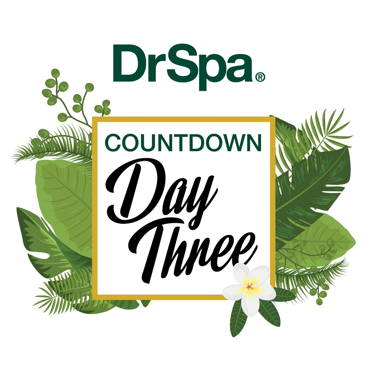 The countdown to 5th October starts now!  #DrSpa #bigannouncement https://t.co/hH5mILaKFl