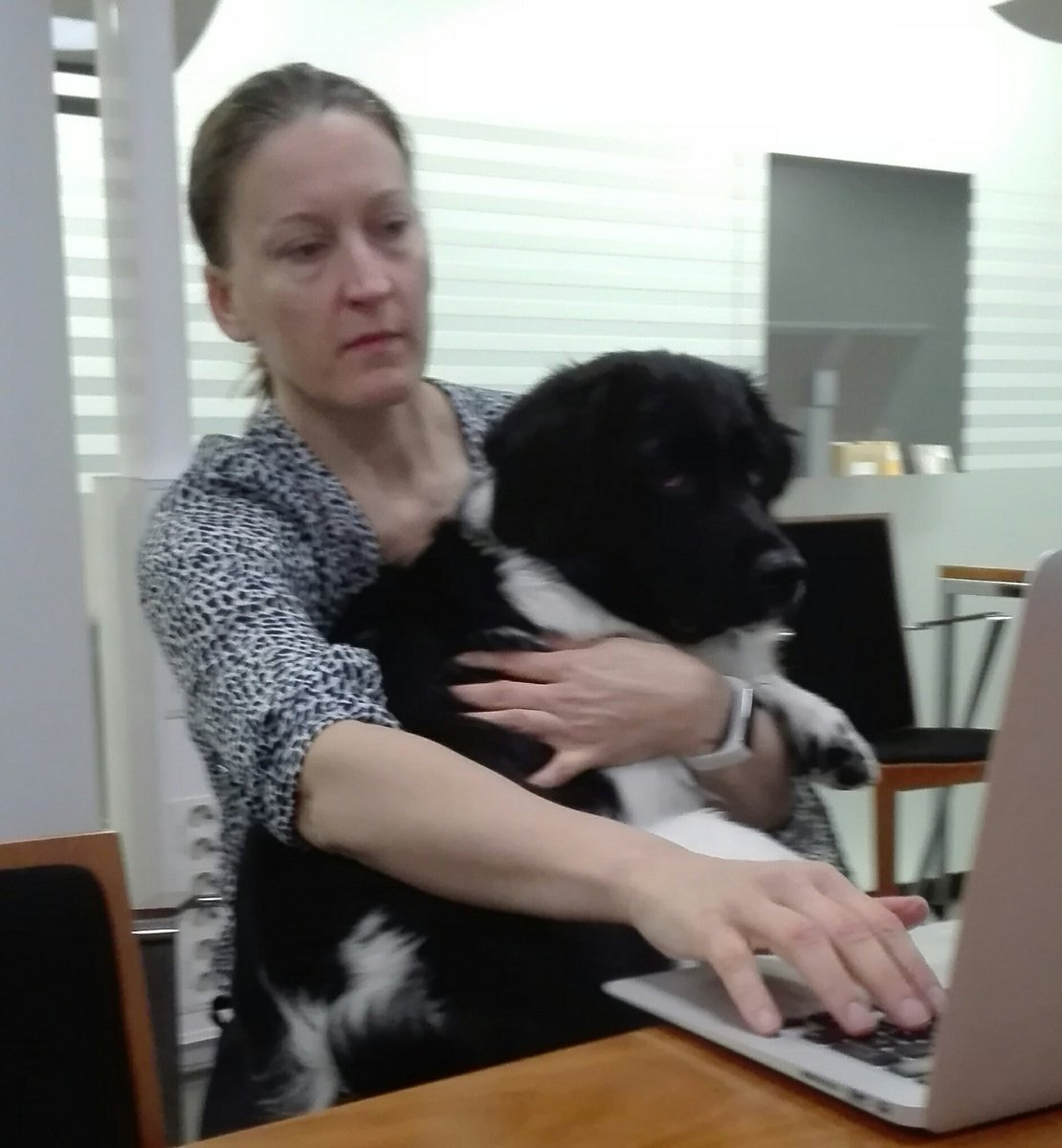 #impacthelsinki Thinking out-of-the-box! Today our team got some support from the canine family. @mspahkal @TanjaSuni @KristerTalvinen<br>http://pic.twitter.com/ey5JIPjlsT