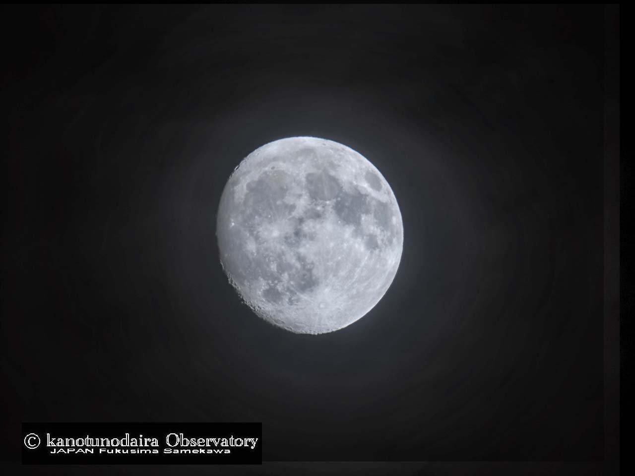 明日は中秋の名月です。