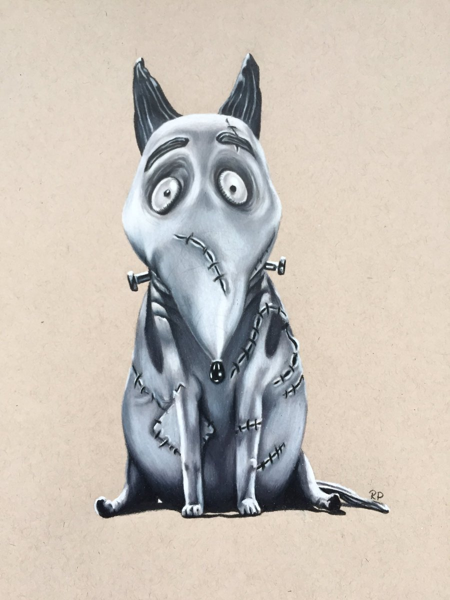 Renate On Twitter My Finished Sparky Drawing From Frankenweenie Timburton Timburton Frankenweenie Art Drawing Coloredpencils Https T Co Emtofzhsdc Https T Co G4ozcxzbab
