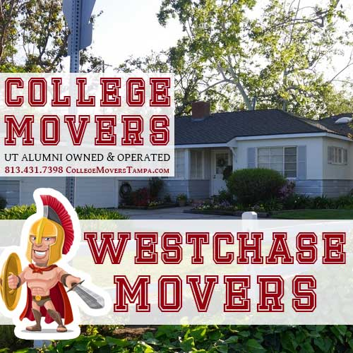 813 431 7398 Http Collegemoverstampa Movers Westchase Westchasemoverservices Moverserviceswestchase Westchasemovers Moverswestchase