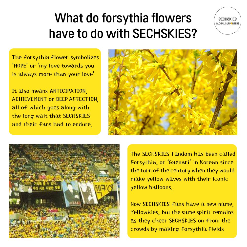Sechskies Global On Twitter Relationship Between Sechskies And