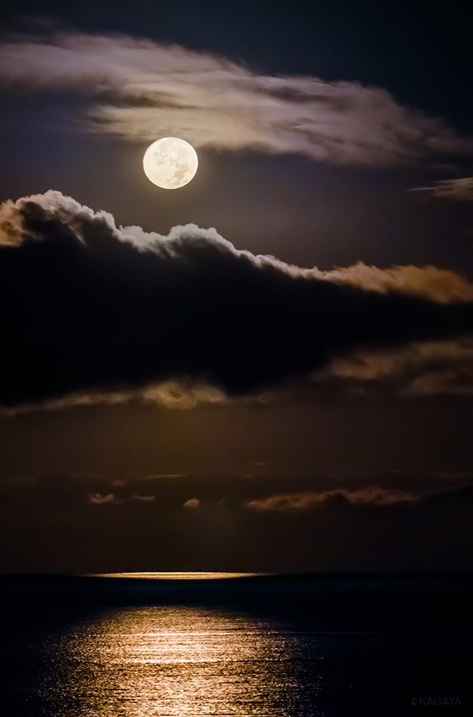 今夜は中秋の名月です。 各地の月の出の時刻:東京16:42 大阪16:59 名古屋16:53 福岡17:19 札幌16:41 仙台16:39 那覇17:27 日没時には東に月が昇っていて、ほぼ一晩中見え、未明に西に沈みます。 写真は昨年青森県で撮影した未明西空の中秋の名月。