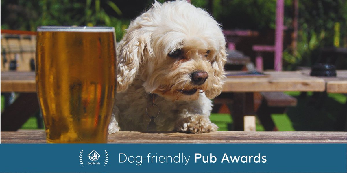 Big woofs to @runapub for supporting the 2017 Dog-friendly Pub Awards! Vote for your favourite today: https://t.co/Ts8Qzlbe9y #dogbuddypubs https://t.co/TO5vTK1KnG