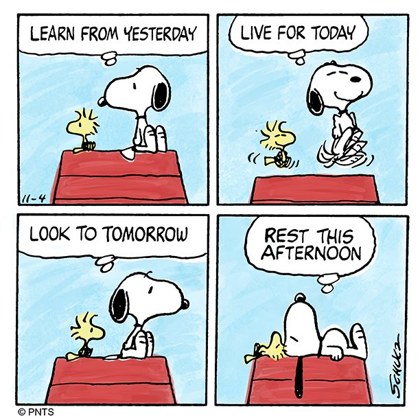 "Cartoon Word Quote: PEANUTS On Twitter: ""Snoopy's Words Of Wisdom"