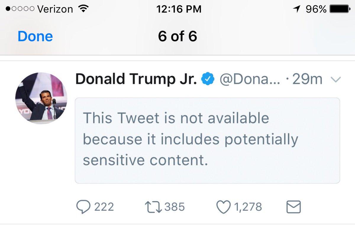 Twitter hides Trump Jr. retweet of Drudge link behind ...