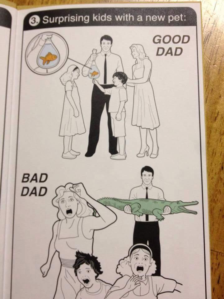 Good Dad Bad Dad Book