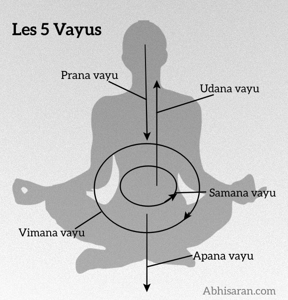 pankaj saini on twitter les 5 vayus dans yoga https t co