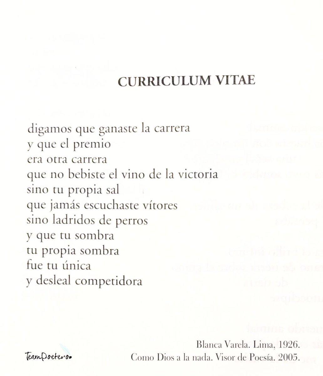 Contemporáneo Visor De Currículum Adorno - Ejemplo De Currículum ...