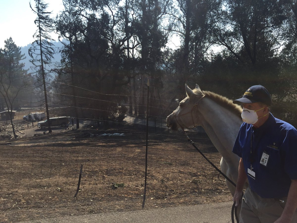 Photos coming in from #UCDavis Veterinary Emergency Response Team doing search and rescue missions in #CAfires. https://t.co/785IQQQYlr