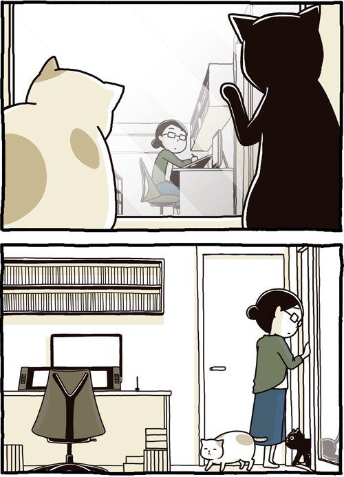 猫が人間に扉を開けさせておいて通るわけでもないやつ、何がしたいのかずっと謎だったけど、別の目的のため…