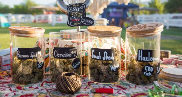Why this feminist weed camp isn't just for white women https://t.co/E0FbCPV7z0