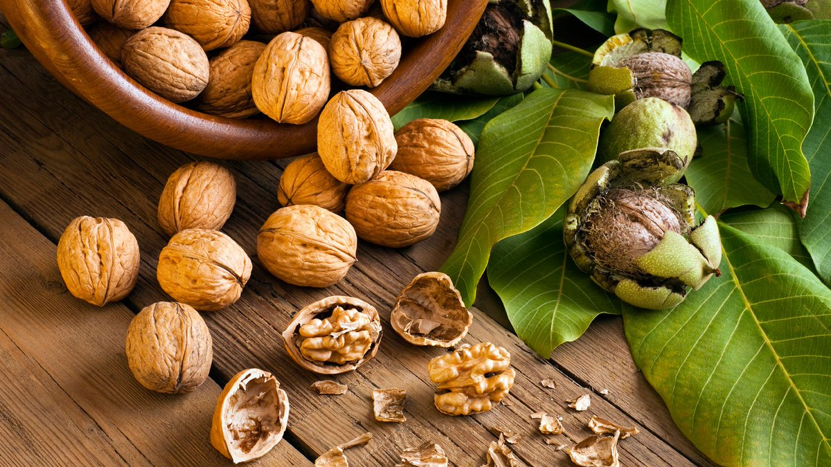 Did you know that walnuts have high levels of antioxidants, vitamins and minerals also improve mental alertness? #health #womenswellness <br>http://pic.twitter.com/B5RJZH5xTQ