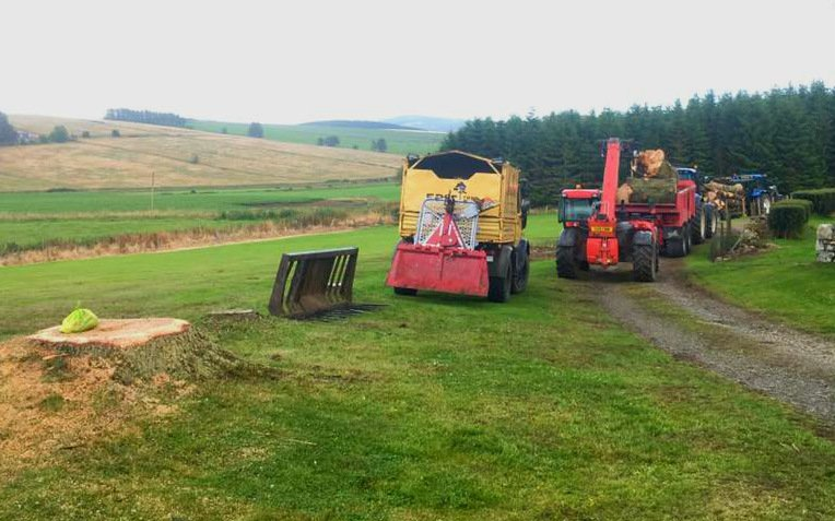 . Pulled over a couple of decent sized Grand Fir. . #treefelling #timber #lumber #treesurgeon #Aberdeenshire  #Moray<br>http://pic.twitter.com/geWX7wEqdK
