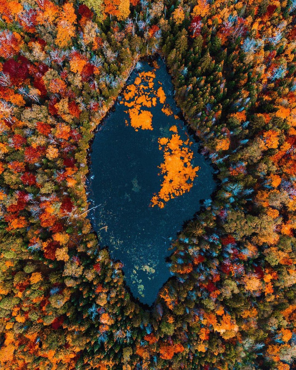 RT @earth: Fall colours in Vermont https://t.co/0wowdbZvjC
