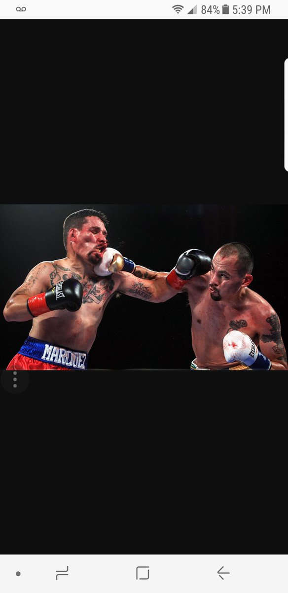 Is everlast boxing
