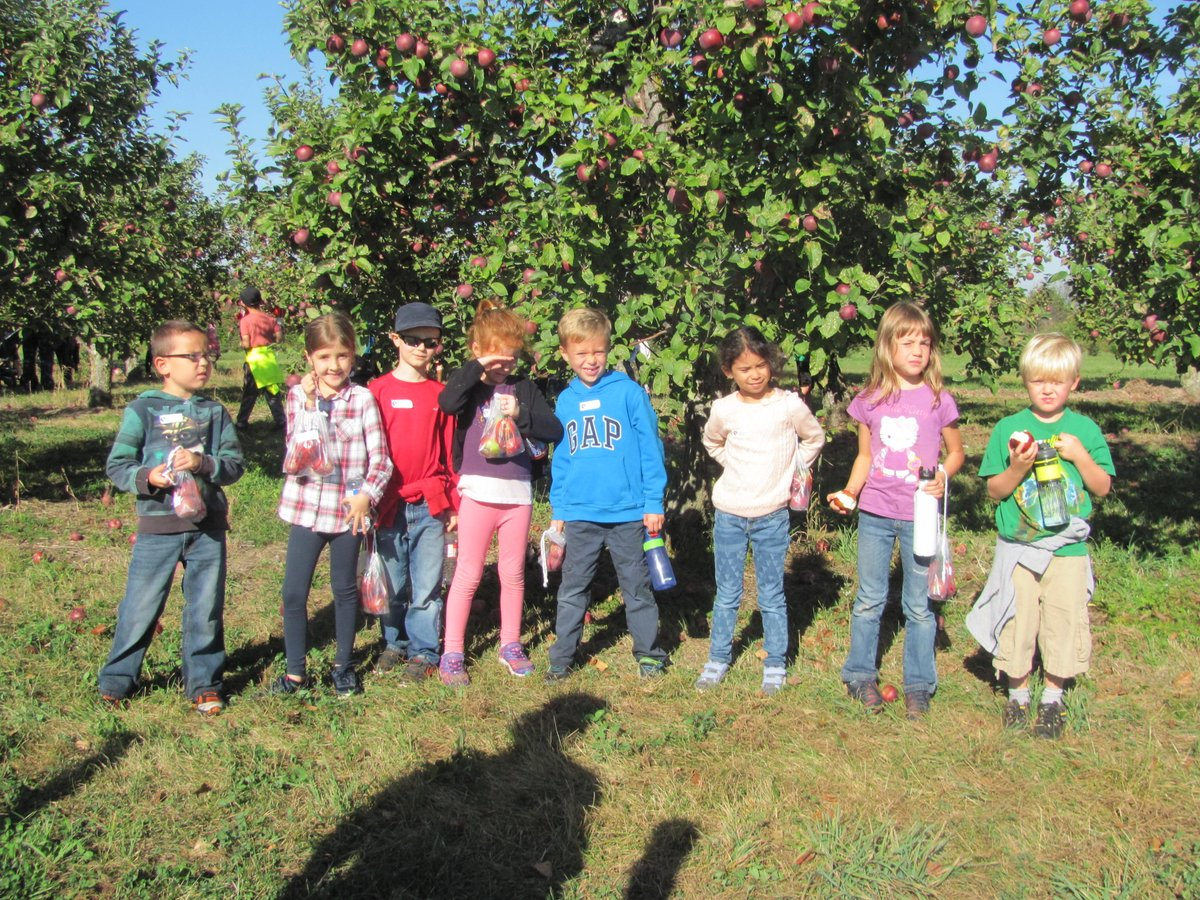The Grade 1/2 students enjoyed the day at Albion Apple Orchard on Tuesday.  The apples were ripe for the picking.