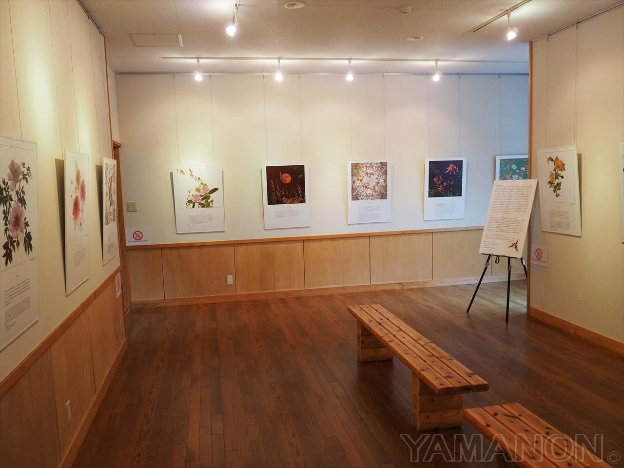 『福島の花』写真展(あぶくま高原美術館)