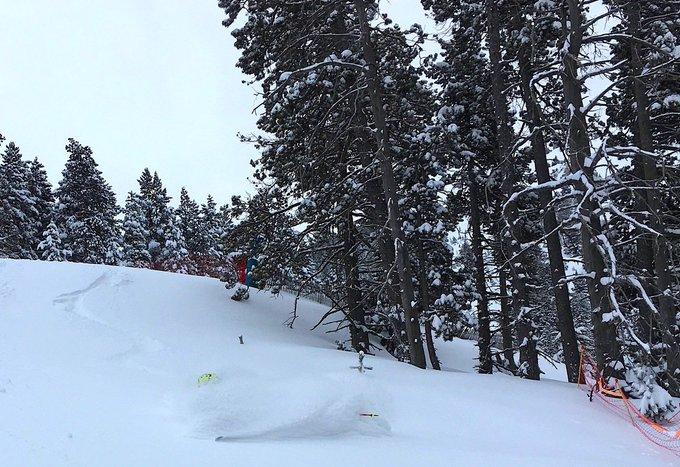 Desde @SamSuarezSki reflexionan sobre comprar o no unos esquís de #fuerapista. [OPINION] ➡️https://t.co/1Wiv4FNBzJ