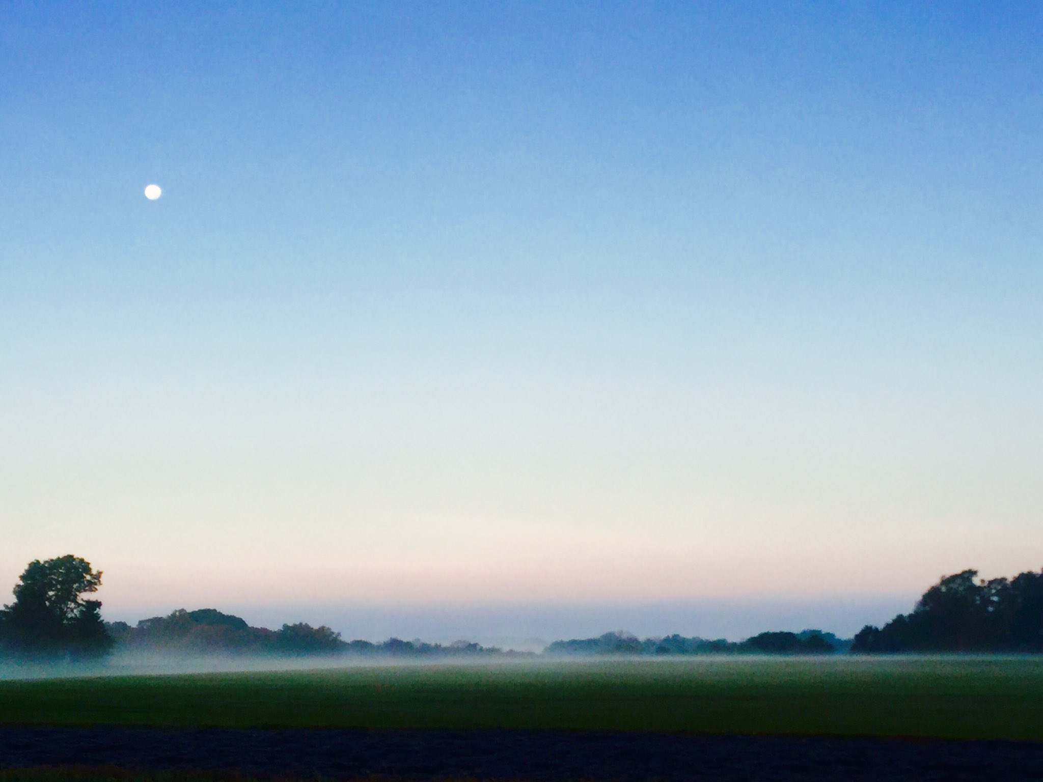 """Off with the """"Hosses"""" of Chesapeake Bay......it's stunning here.....moon and mist xx https://t.co/1mNtACESTE"""