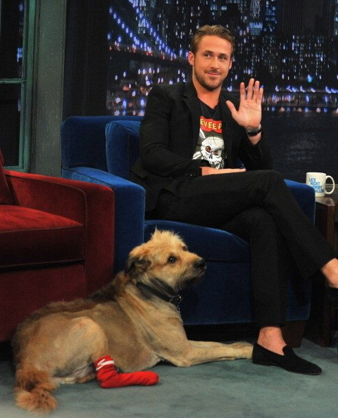 Ryan Gosling&#39;s Dog George Passed Away And This Emotional Tribute To Him Is So Pure #gosling #george #passed…  http:// dlvr.it/Pt0vZR  &nbsp;  <br>http://pic.twitter.com/0XHq43G4TY