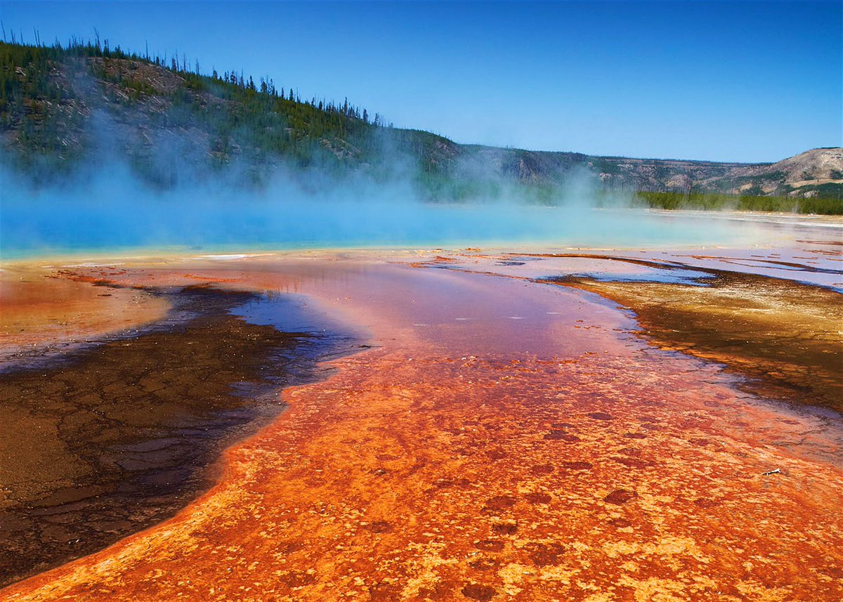 an overview of the remotely sensed data in the yellowstone national park Remotely sensed data essay examples 1 total result an overview of the remotely sensed data in the yellowstone national park 634 words 1 page company contact.