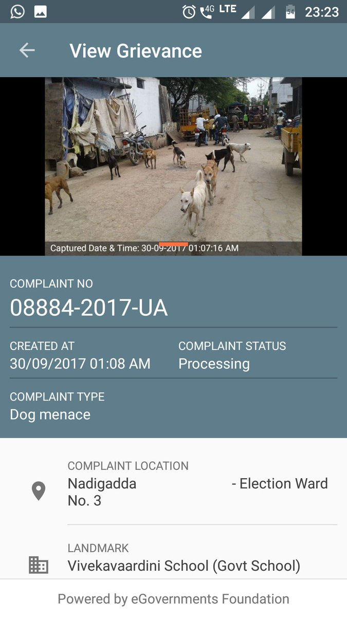 dog menace complaint