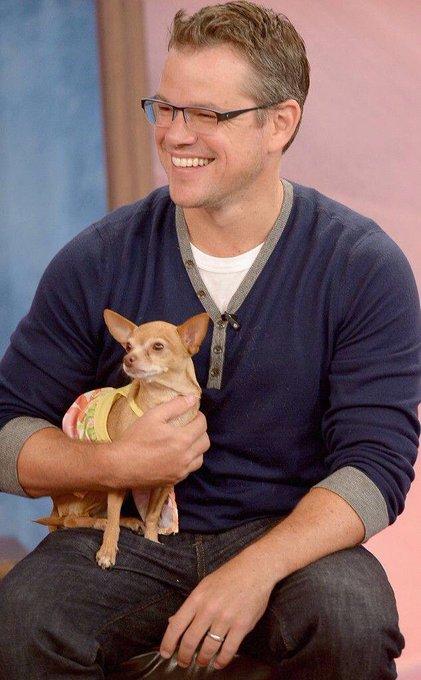 Hoy cumple años un gran actor muy perruno. Happy birthday Matt Damon!