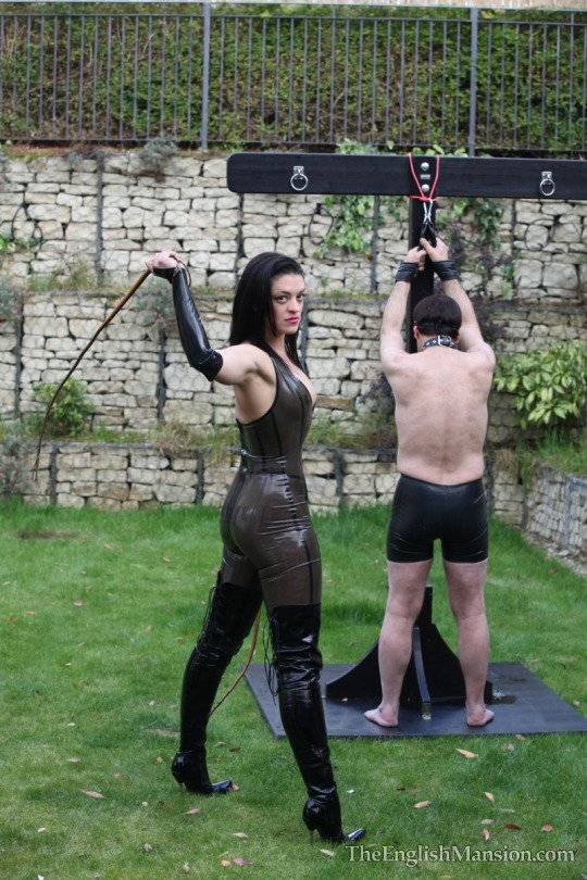 image Male dom the session