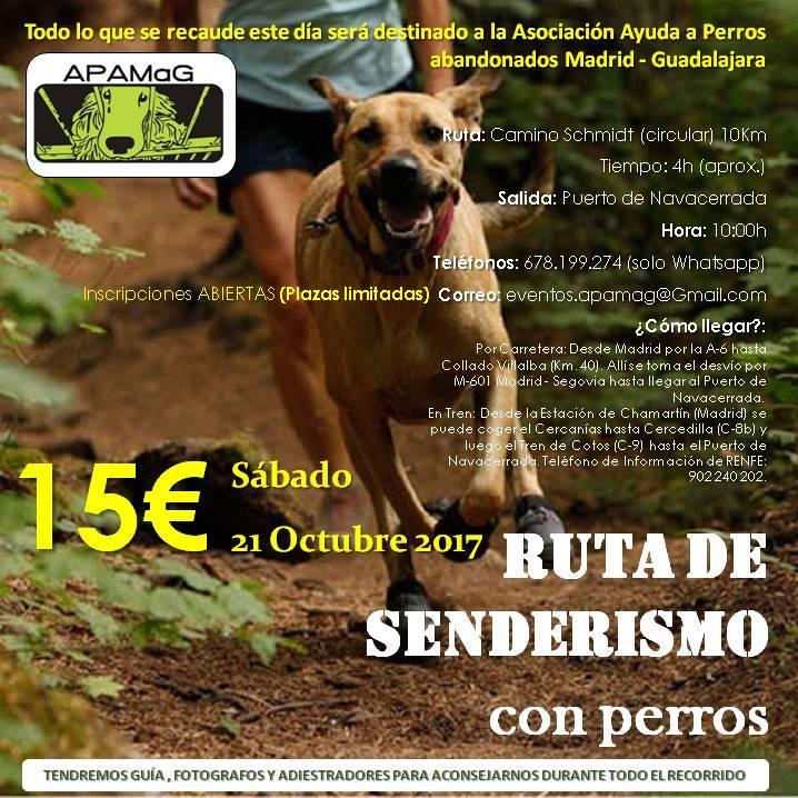 Senderismo con perros @ Puerto de Navacerrada