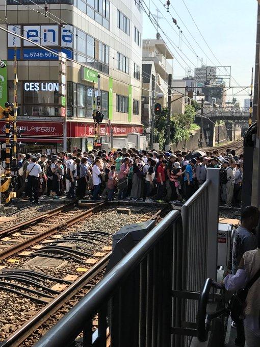 東急池上線が『無料一日乗車券』...