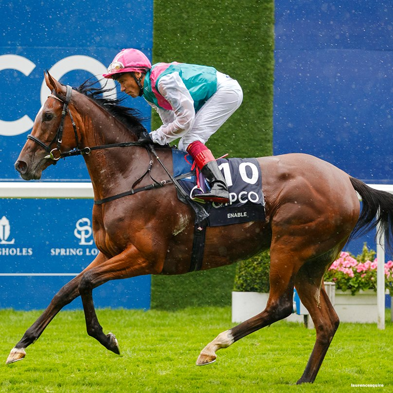 Enable Horse