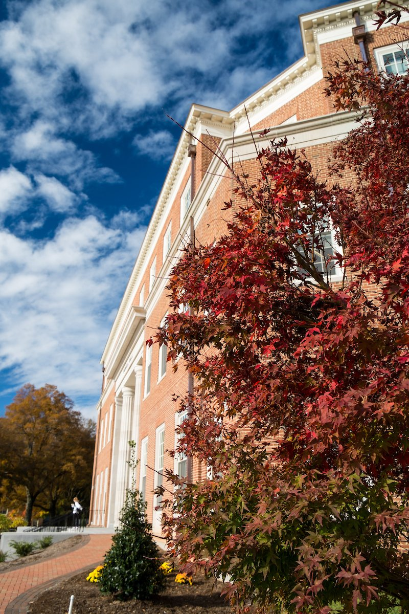 """Autumn is a second spring when every leaf is a flower."" - Albert Camus #bizdeacs"